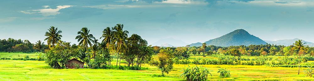 Kandalama Reservoir, Dambulla, Sri Lanka, Asia