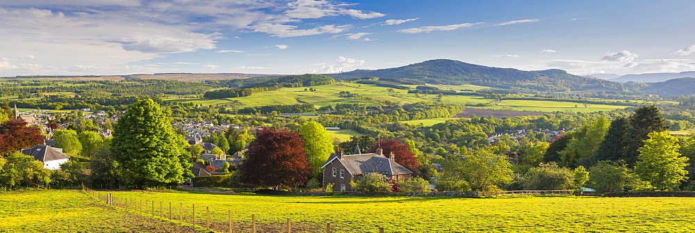 Perthshire countryside, Crieff, Scotland, United Kingdom, Europe - 1237-116