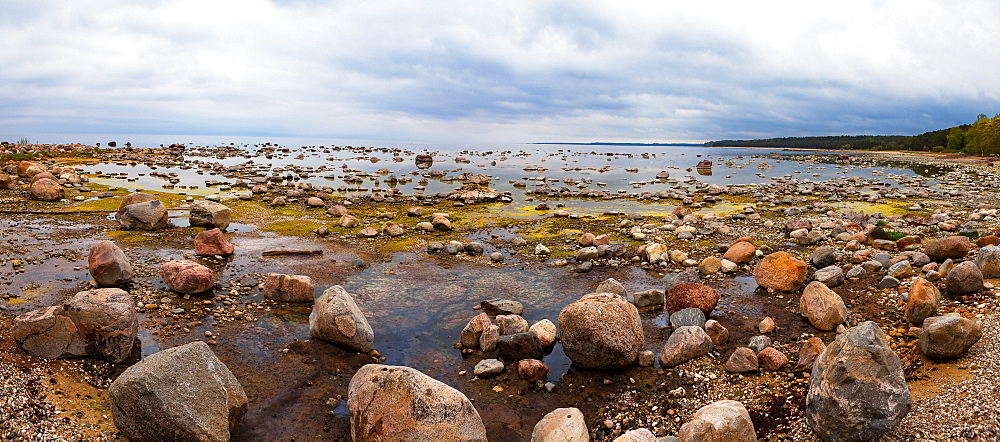 Baltic Sea coast with granite boulders on a cloudy day, Estonia, Europe - 1252-8