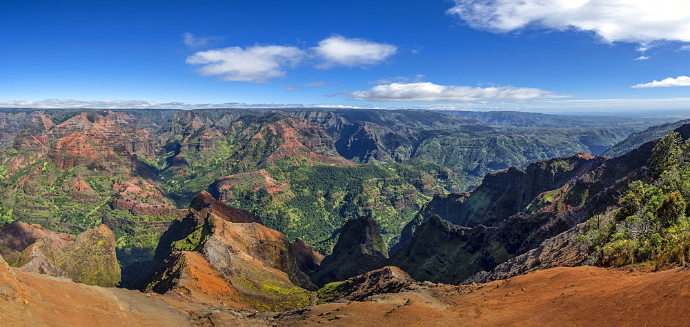 Panorama of Koke'e State Park in the Waimea Canyon in the north west of Kauai, United States of America - 1308-30