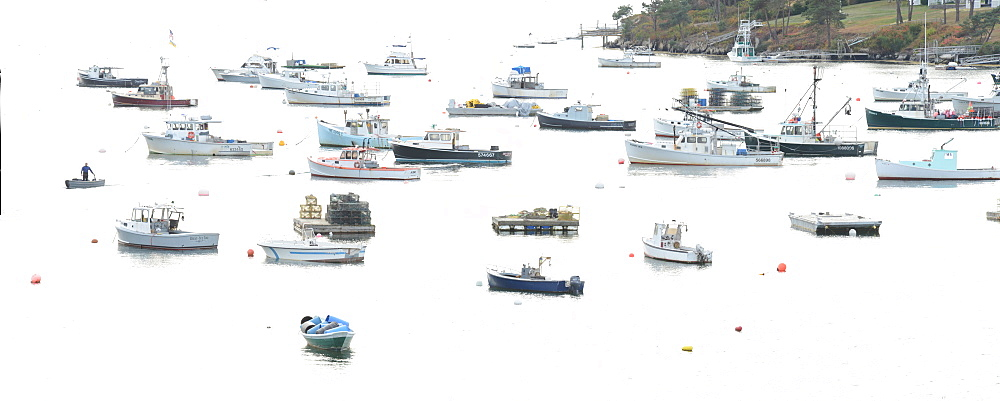 Fishing Fleet anchored in cove