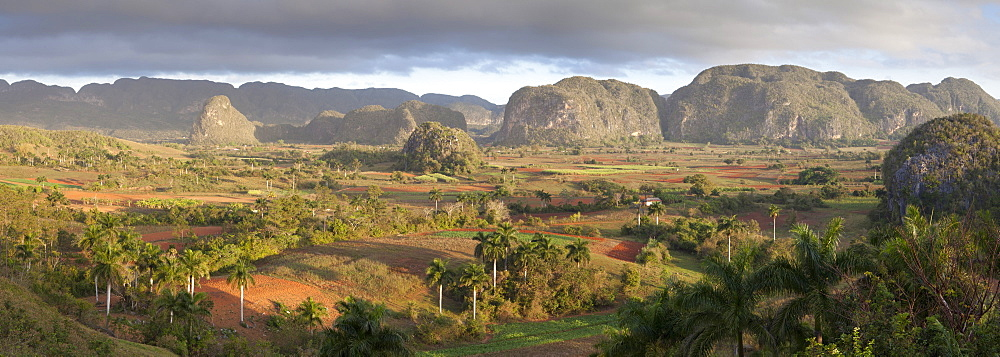 Panoramic view of Vinales Valley, UNESCO World Heritage Site, from Hotel Los Jasmines, early morning, Vinales, Pinar Del Rio Province, Cuba, West Indies, Central America