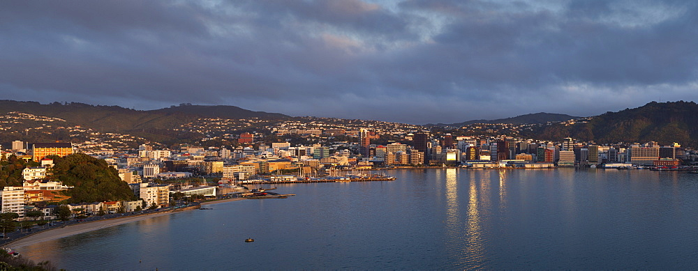 Panorama of Wellington city and harbour, early morning, Wellington, North Island, New Zealand, Pacific