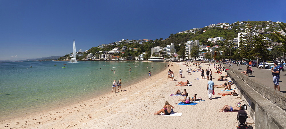 Oriental Bay and beach, Wellington, North Island, New Zealand, Pacific