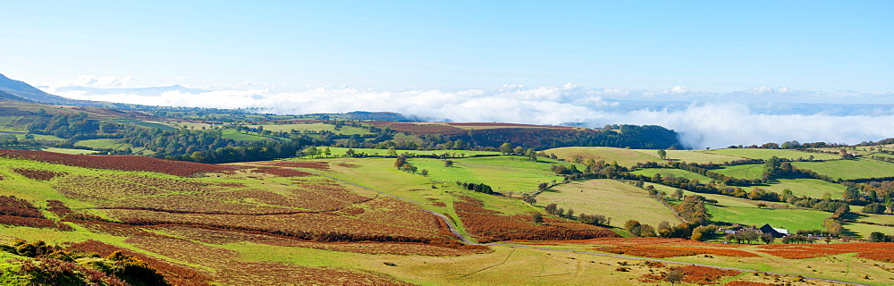 A panoramic landscape view near Hay Bluff, Powys, Wales, United Kingdom, Europe - 663-781