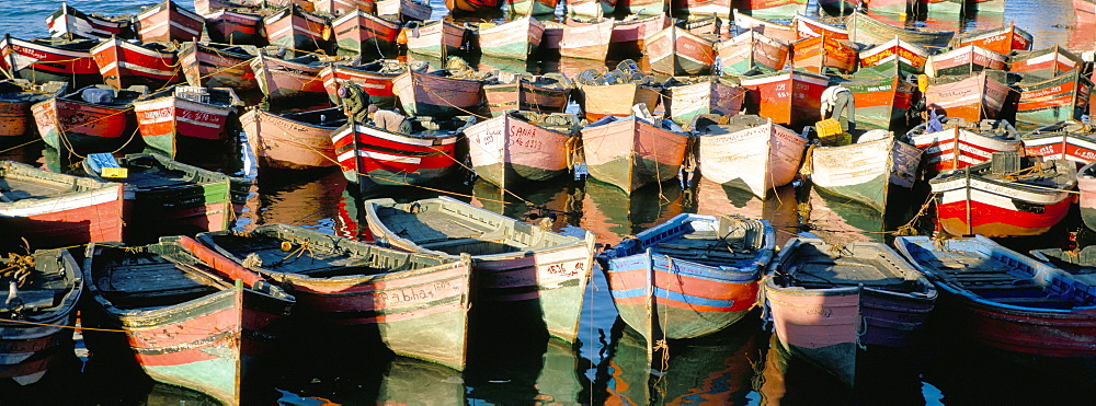 Fishing harbour, El Jadida, Atlantic coast, Morocco, North Africa, Africa