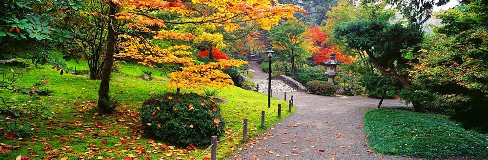 Japanese Garden Seattle WA