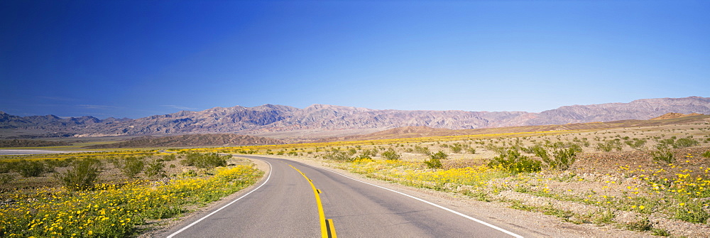 Empty road passing through a landscape, Death Valley, California, USA