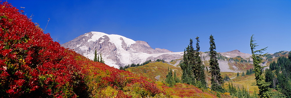 Low angle view of a snowcapped mountain, Mt Rainier, Mt Rainier National Park, Washington State, USA - 752-1696