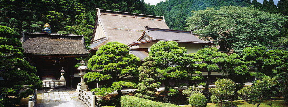 Monastery surrounded by trees, Koyasan, Japan - 752-1700