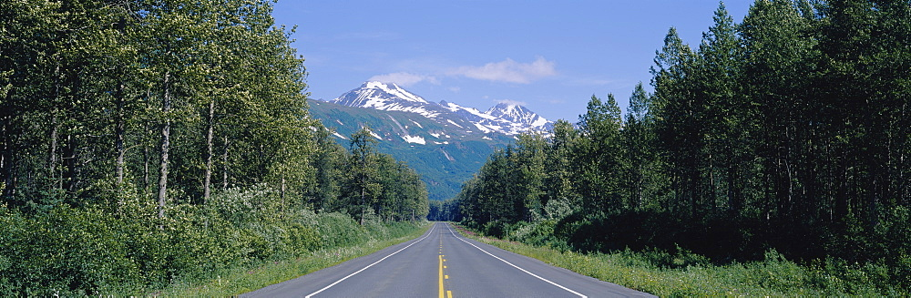 Highway passing through a landscape, Richardson Highway, Alaska, USA - 752-1709