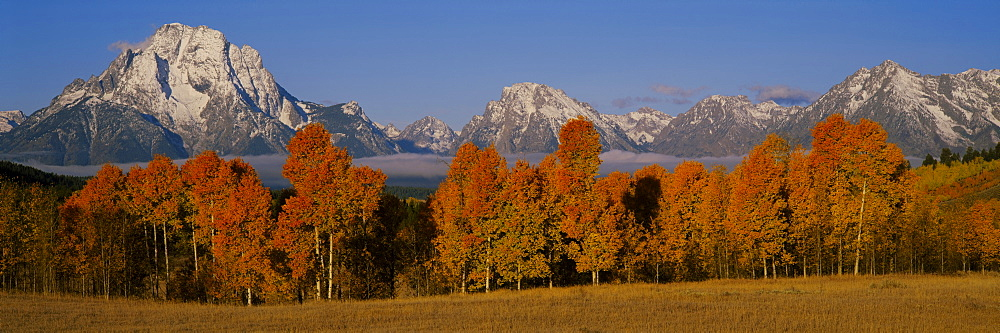 Panoramic view of mountains, Grand Teton, Teton Range, Grand Teton National Park, Wyoming, USA - 752-1746