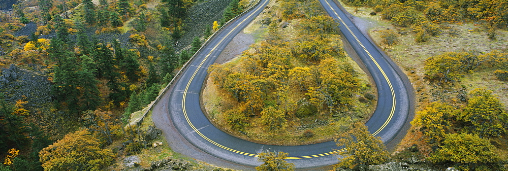 High angle view of a road passing through a forest, Columbia River Highway, Rowena, Oregon, USA - 752-1785