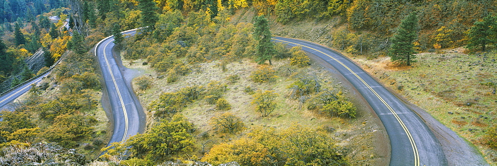 High angle view of a road passing through a forest, Columbia River Highway, Rowena, Oregon, USA - 752-1786