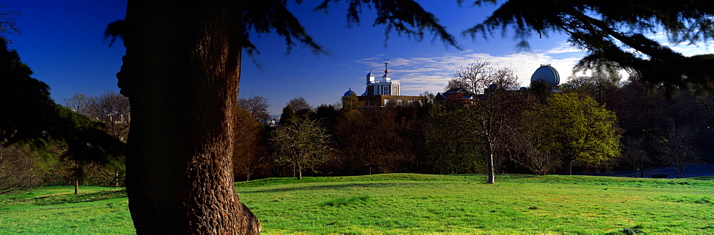 Trees In A Park, Royal Observatory, Greenwich, England, United Kingdom - 752-1838