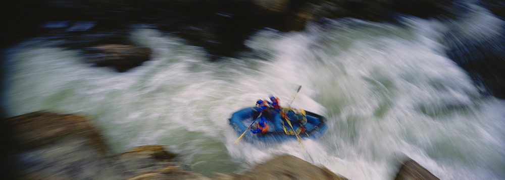 High angle view of a group of people white water rafting, Salmon River, Orleans, California, USA