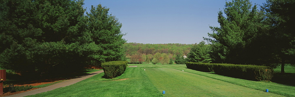 Hedges on a golf course, Towson Golf and Country Club, Baltimore County, Maryland, USA
