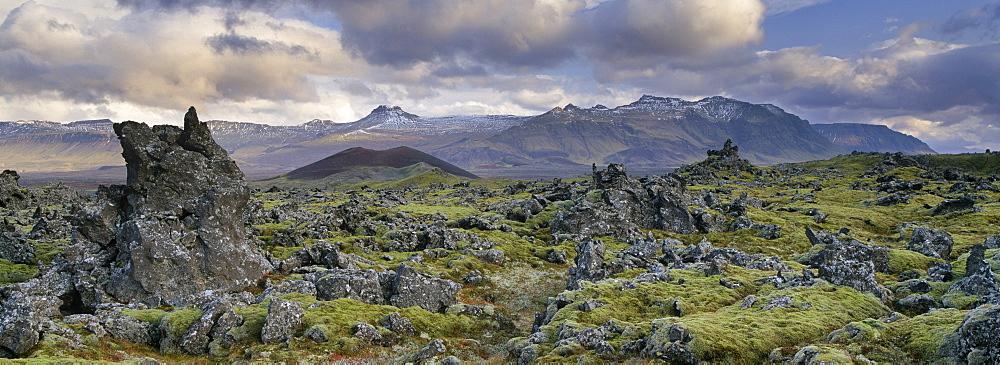 Lava fields, Snaefellsnes Peninsula, Iceland, Polar Regions