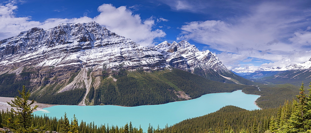 Peyto Lake on the Icefields Parkway, Banff National Park, UNESCO World Heritage Site, Canadian Rockies, Alberta, Canada, North America
