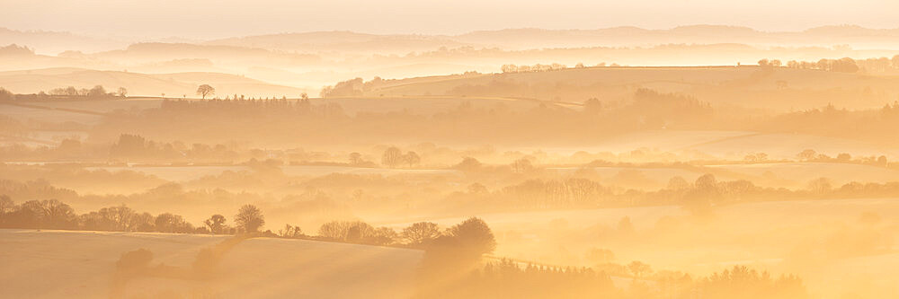Mist covered rolling countryside at dawn, Dartmoor, Devon, England. Winter (March) 2016.