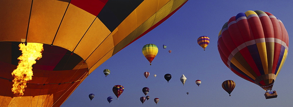 Hot air balloon festival, Bristol, England, United Kingdom, Europe - 812-129