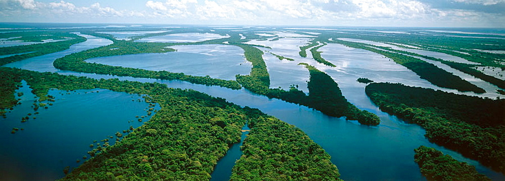 Archipelago of Anavilhanas at Amazon River, Brazil - 817-10368