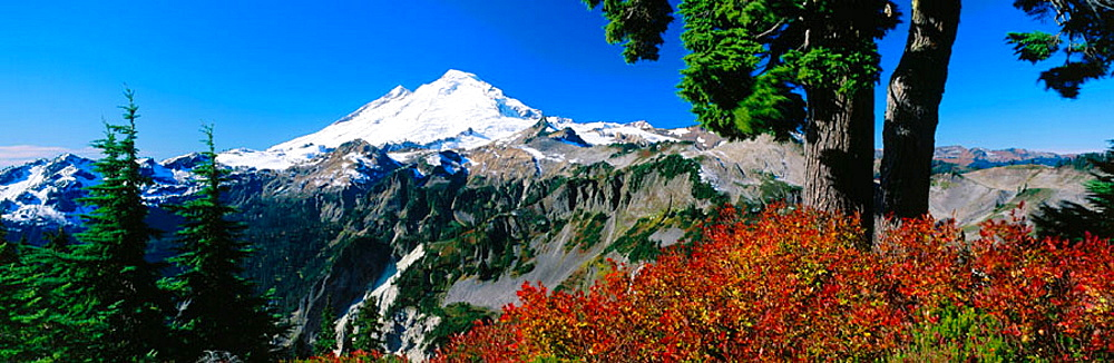 Mount Baker, Mount Baker-Snoqualmie National Forest, Washington, USA