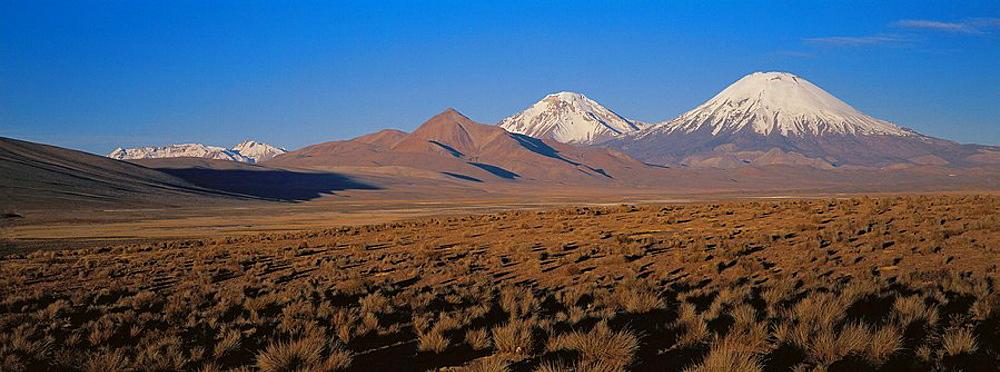 Parinacota and Pomerape Volcanoes, Lauca National Park, Chile