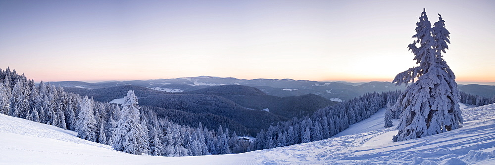 Winter landscape at Belchen summit at sunrise with a view to the Feldberg mountain, Black Forest, Baden-Wuerttemberg, Germany, Europe