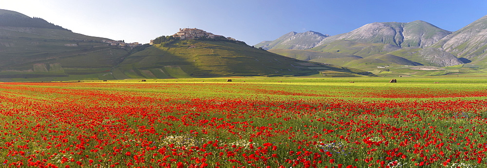 Castelluccio village in the Sibillini mountains at wild flower season, Piano Grande plain Umbria, Italy, Europe