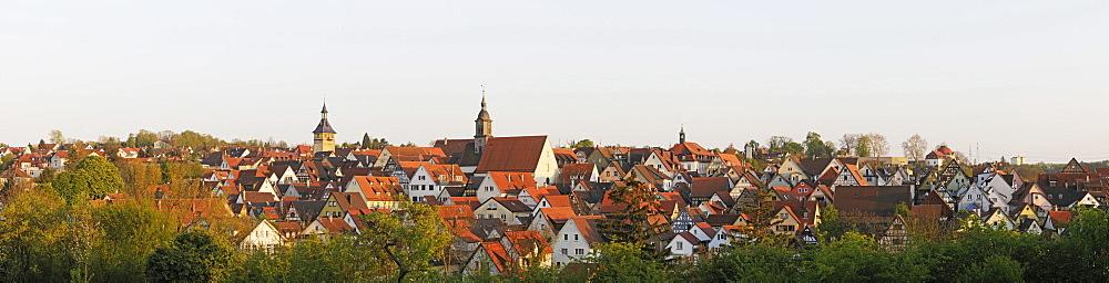 View of Marbach am Neckar, Baden-Wuerttemberg, Germany, Europe