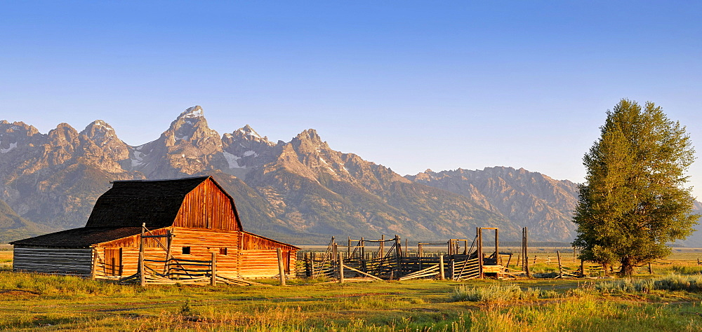 John und Bartha Moulton Homestead Mormon Barn at dawn, historic barn of the Mormons in front of Teton Range mountain chain, Mormon Row Historic District, Antelope Flats, Grand Teton National Park, Wyoming, USA, North America