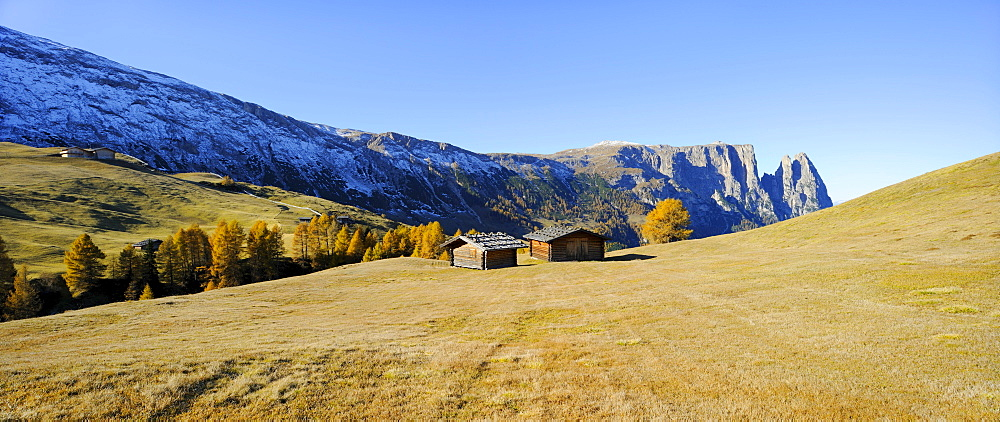 Seiser Alm mountain pasture with Mt. Sciliar in autumn, Dolomites, South Tyrol, Italy, Europe