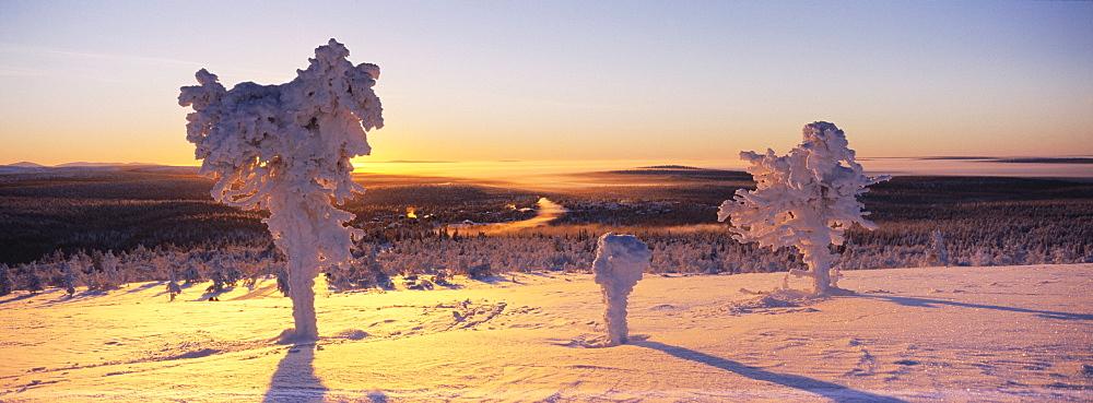 Winter landscape, Lappland - 832-322614