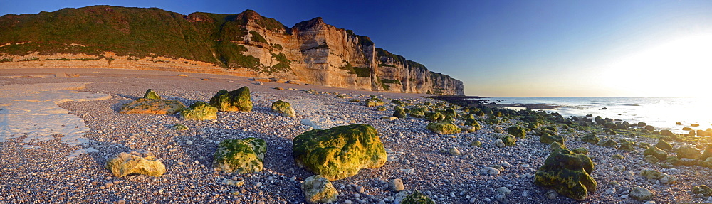 The coast near Étretat with its steep chalk cliffs illuminated by warm evening light, Côte d'Albâtre, Département Seine-Maritime, Haute-Normandie, France, Europe