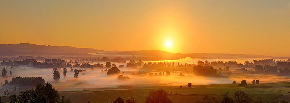 Sunrise over the Aachried area, left behind the city Radolfzell, Hegau area, Landkreis Konstanz county, Baden-Wuerttemberg, Germany, Europe