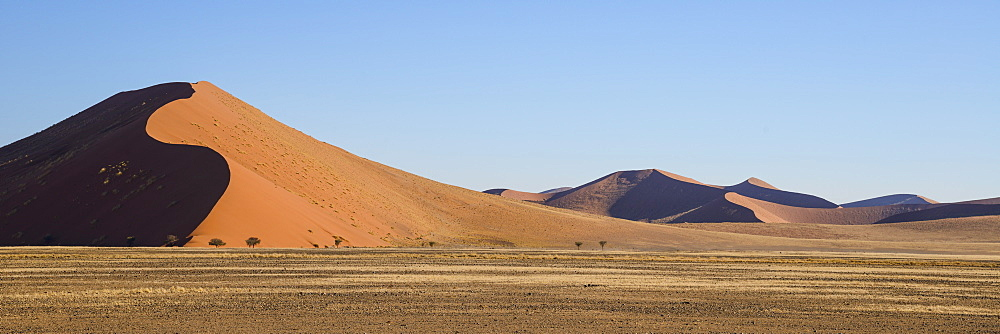 Iron red dunes in the late afternoon sun at Sossusvlei, Namib Naukluft, Namibia, Africa