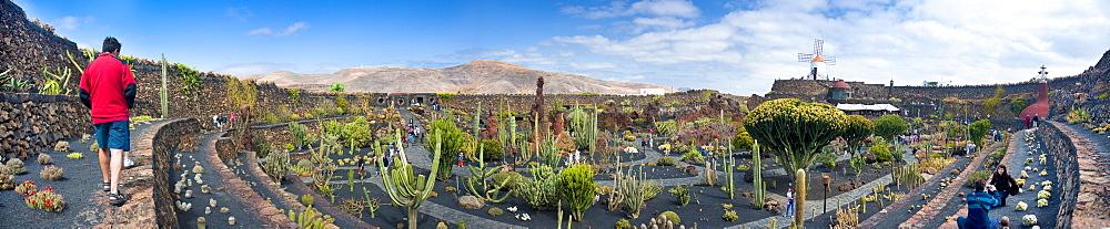 Jardin de Cactus (Cactus Garden) created by César Manrique. Arrecife, Jardin De Cactus, Cactus Garden, Lanzarote. Canary Islands