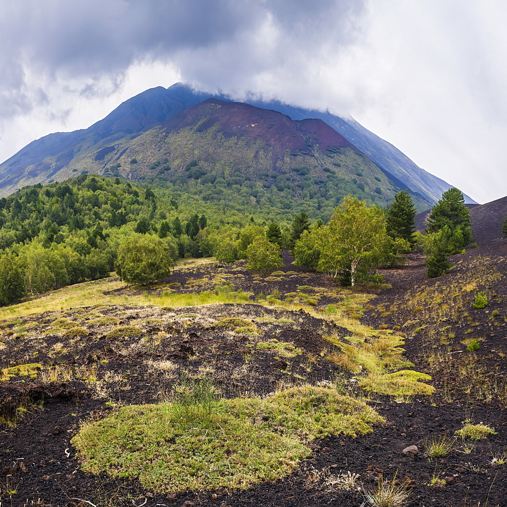 Mount Etna Volcano, old lava flow from an eruption, UNESCO World Heritage Site, Sicily, Italy, Europe