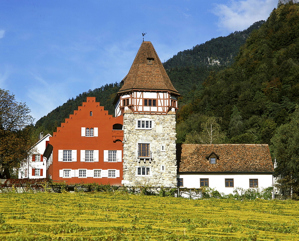 Europe, Liechtenstein, Vaduz, Red house, vineyards