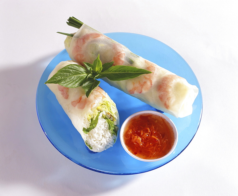 Studio shot of Vietnamese spring rolls with sauce on a blue plate.