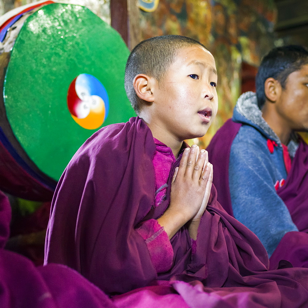 Young buddhist monk in a pose of worship, Sikkim, India