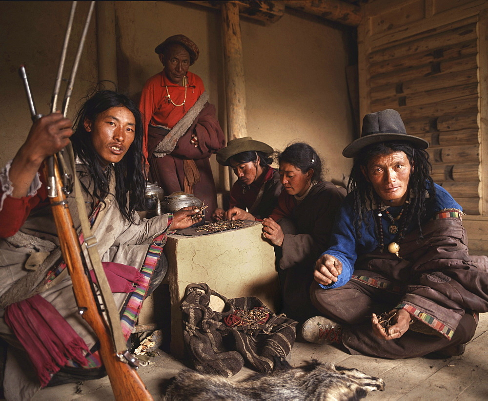 Tibetan nomads from central tibet profitting from selling yartsa gunbu, covetted aphrodiasic propoerties sold to chinese vendors in lhasa