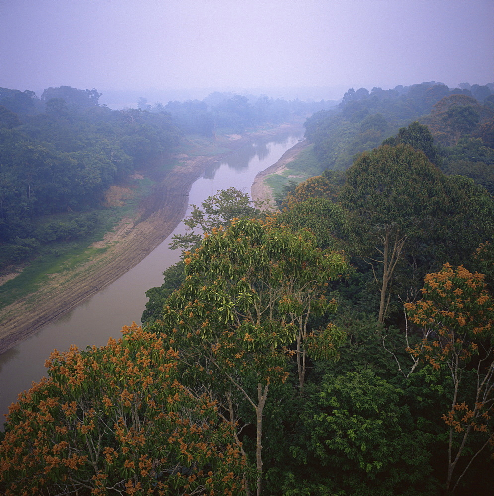 Morning mists in Rio Negro region of Amazon rainforest, Amazonas State, Brazil, South America - 197-4000
