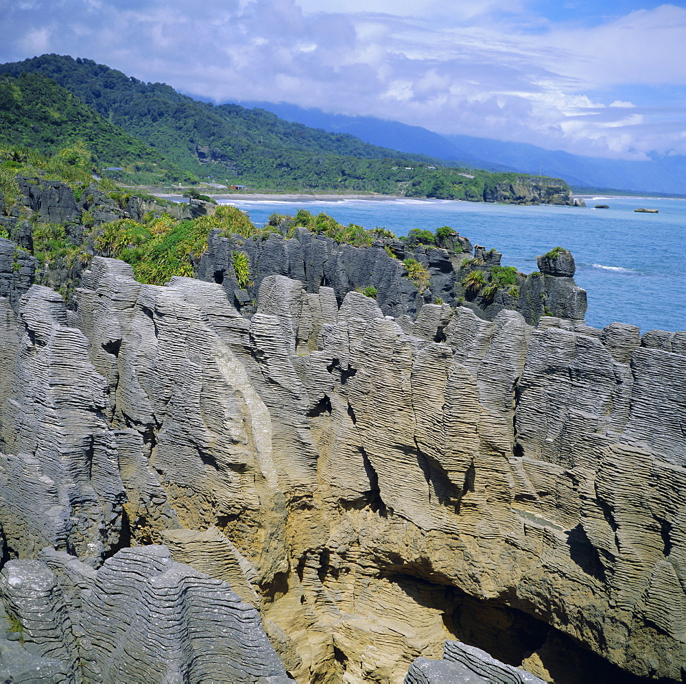 The Pancake Rocks at Punakaiki, West Coast District, South Island, New Zealand