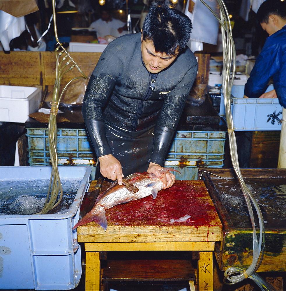 Cutting live fish, morning fish market, Tsukiji, Tokyo, Japan