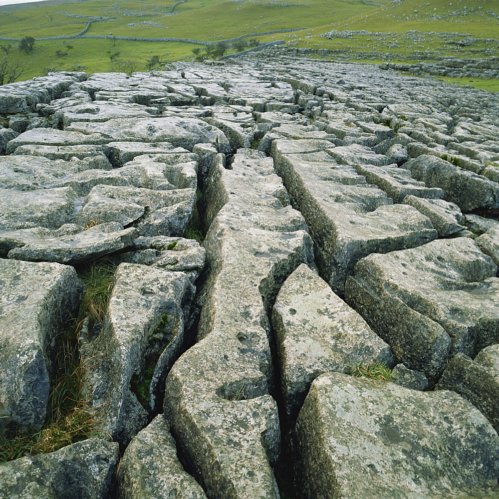 Limestone pavement, Malham, Yorkshire Dales National Park, North Yorkshire, Yorkshire, England, United Kingdom, Europe - 485-5320
