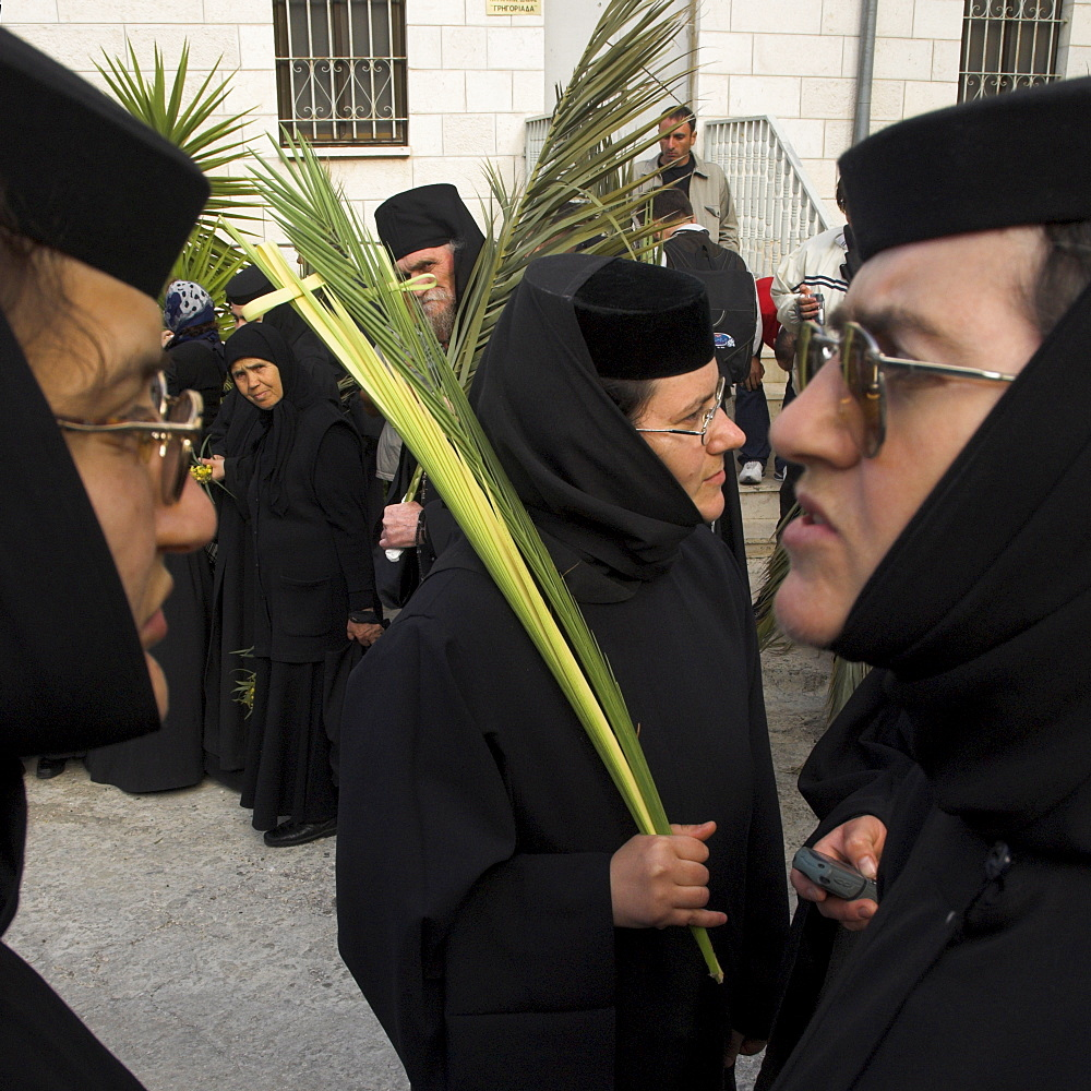 Three Greek nuns holding palms during Orthodox Easter Palm procession from Betphage to the Old City, Mount of Olives, Jerusalem, Israel, Middle East