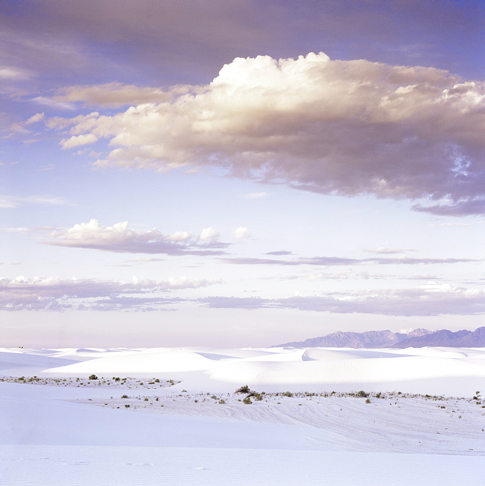 Barchan dune, 275 square miles of gypsum sand, White Sands National Monument, New Mexico, United States of America (U.S.A.), North America