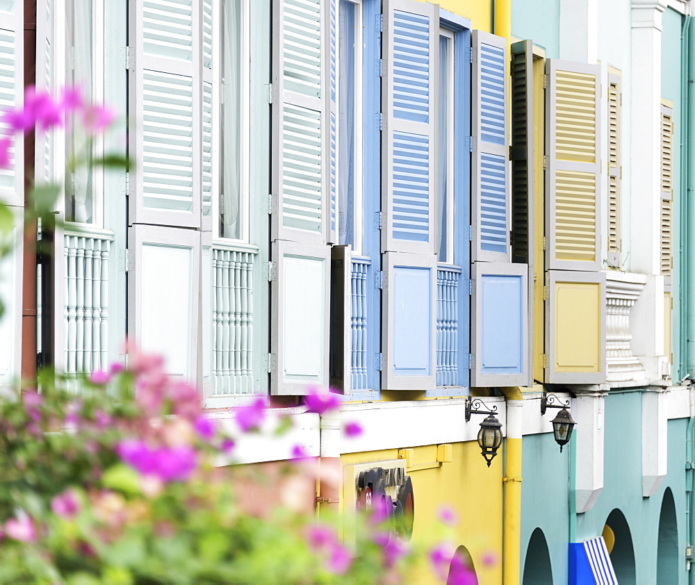 Colourful wooden window shutters in the Boat Quay area of Singapore, Southeast Asia, Asia - 803-225